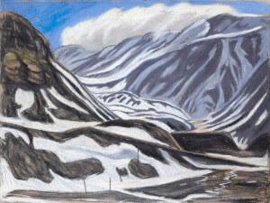 Nybyen / Longyearbyen Im Mai/Juni 2017 sind die Wissenschaftler der Flug-Kampagne in ehemaligen Kohlearbeiter-Unterkünften in Logyearbyen/Nybyen untergebracht. Zur Zeit der Schneeschmelze ändert sich der Ausblick täglich.